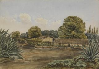 FARM BUILDINGS AMID TREES, WITH CACTI by White, George
