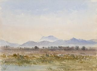 NEAR MARSEILLES by White, George